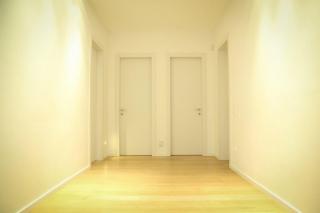 דלתות פנים לבנות