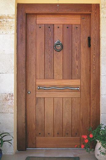 דלת כניסה מיוחדת